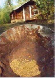 Rencontres aux sommets L'or du Klondike