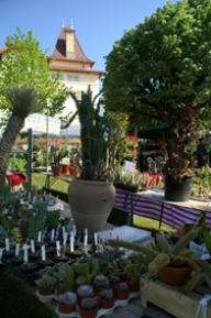 Expo-vente de plantes GREZIEU  NATURE
